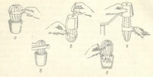 Как правильно пересадить кактус